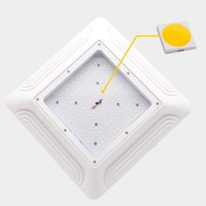 Led Canopy Lights - LED Chips