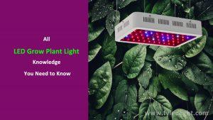 LED Grow Plant Light Knowledge