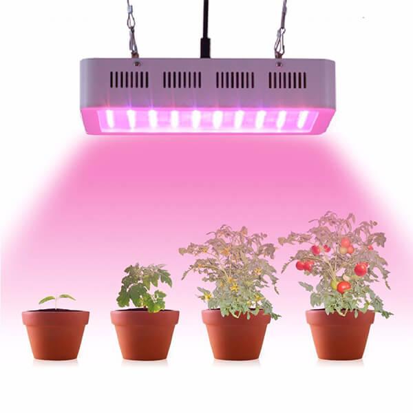 Energy Efficient Grow Lights
