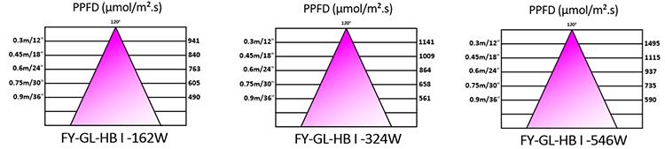 FY-GL-HBI PAR
