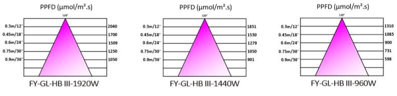 PAR - FY-GL-HB III