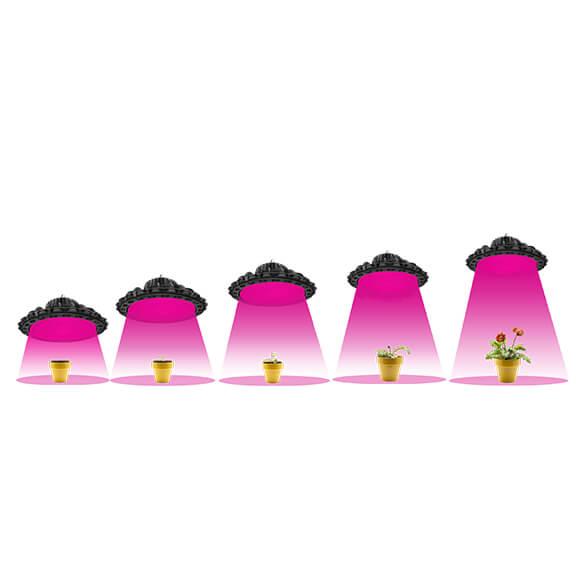 UFO Grow Light - Application