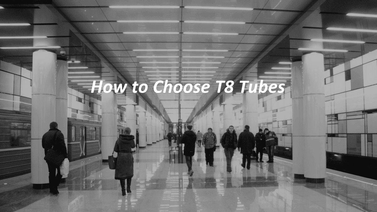 How to choose LED T8 Tube