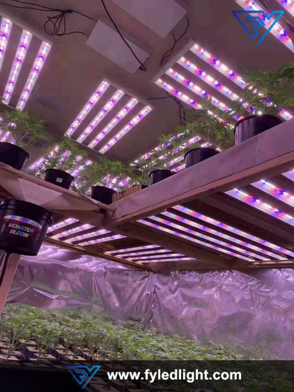 FY-GL-HBIII Indoor plant lights -Greenhouse